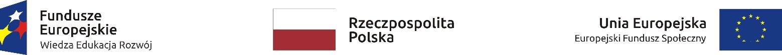 Logo PO WER